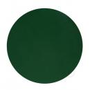 Barva Tmavě zelená